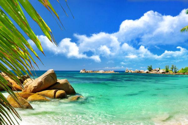 Aruba-Luxury-Hotel-and-Beach-2880x1920