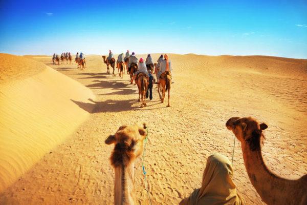 Safari al desierto con cena en Dubai